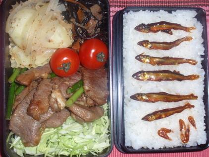 20090331お弁当.JPG