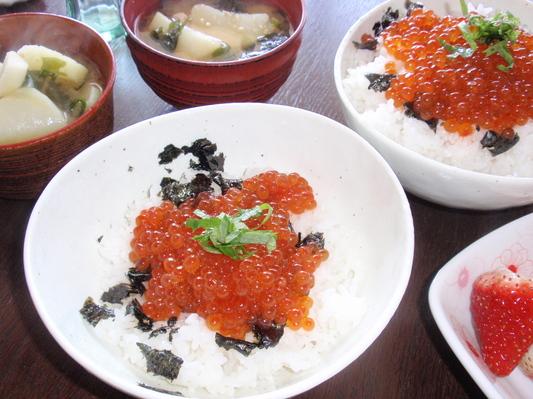 20110412昼食�@.JPG